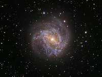 M83-Barred Spiral - NASA