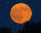 Moonrise - Brenda Culbertson